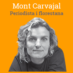 mont-carvajal-opinio