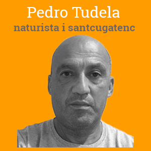 PedroTudela-Naturista-mostra-opinio