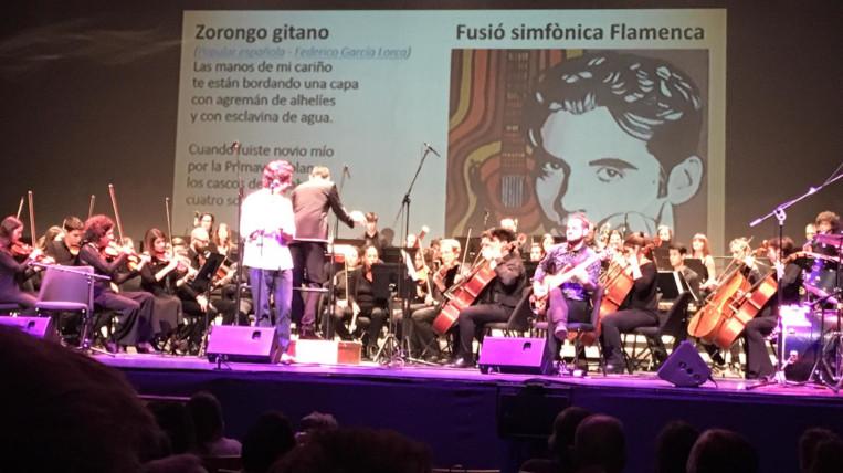 El concert solidari del Rotary Club Sant Cugat recapta uns 9.000 euros per la lluita contra el Parkinson
