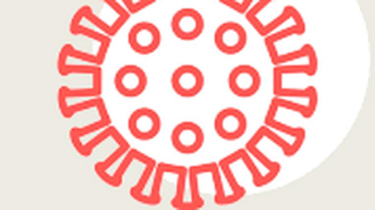 Salut llança una app per fer seguiment de persones amb coronavirus
